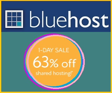 Bluehost-295